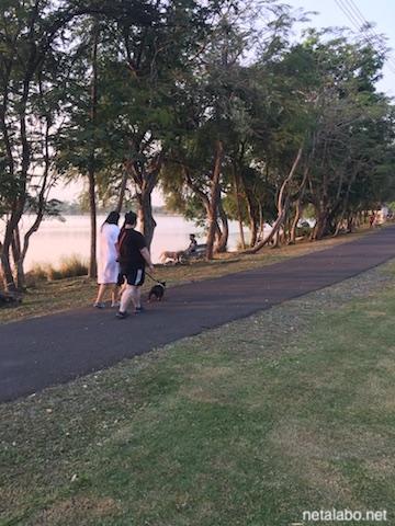 ノンボン公園で犬の散歩