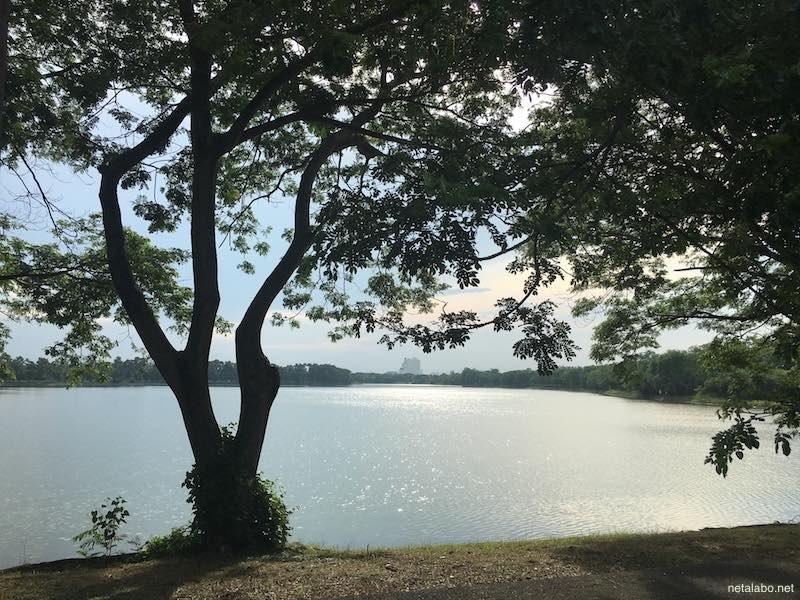 バンコクのノンボンの沼沢