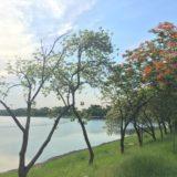 バンコク・ノンボン公園の景色
