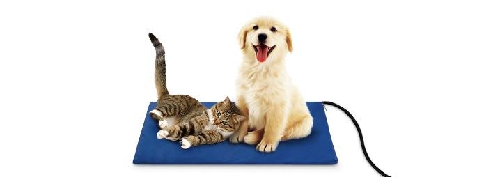 プライムペットの犬と猫